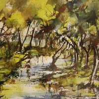 Diane-White-Zambezi-Zambia-Commended-Watercolour