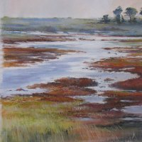 Penny Steynor FSASA | Wetlands | Highly Commended Pastel