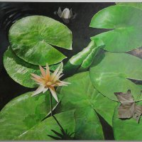 Jeremy-Day---Fallen-Leaf---Acrylic---Highly-Commended_0