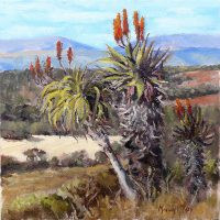 Mandy-McKay---Kariega-Valley-in-Winter---Commmended-Oil