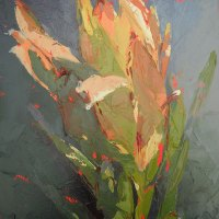 Shaune Rogatschnig | Leucadendron in the Morning Light | Commended Oil