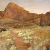 Viv-King-Fossilised-Dunes,Namibia-Oil-Commended